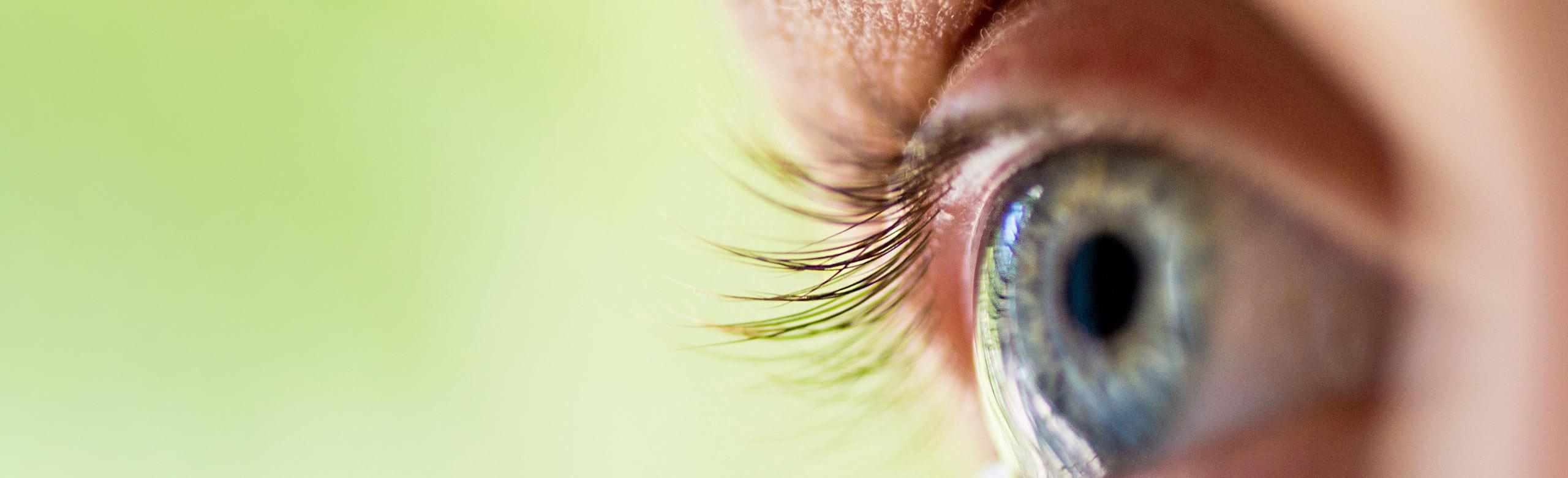 Close-up of an eye